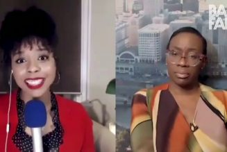 """Nina Turner Says """"Wait"""" When Asked About Force The Vote"""