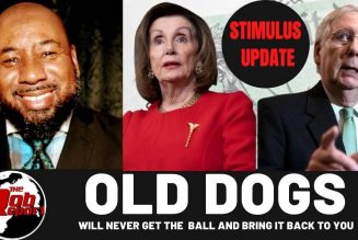 OLD DOGS will never get the  ball and bring it back to you