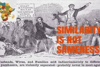 Similarity Is Not Sameness: Self Definition in a White-washed America