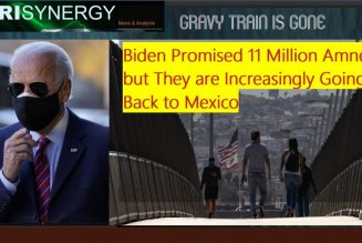 Biden Promised 11 Million Amnesty but They are Increasingly Going Back to Mexico