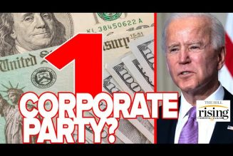 Briahna Joy Gray: Dems Screwup Of Stimulus Shows There's Only One Corporate Party