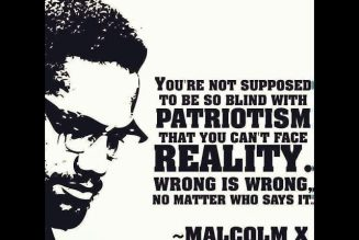 Malcolm X & Dr. Amos Wilson on African American Patriotism & Self-Hatred