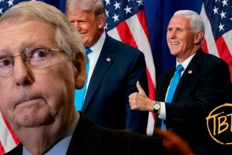Mike Pence and Mitch McConnell: Self Preservation | Tim Black