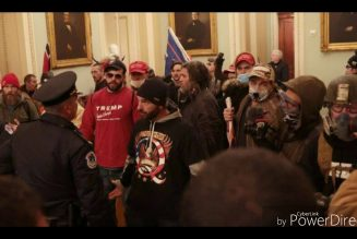 Trump supporters swarm the nation's capital exercising White Privilege
