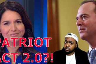 Tulsi Gabbard Destroys Adam Schiff & John Brennan For Wanting To Introduce Patriot Act 2 0