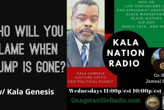 Who Will You Blame When Trump Is Gone? w/ Kala Genesis