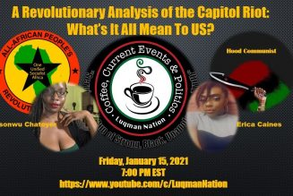 A Revolutionary Analysis of the Capitol Riot