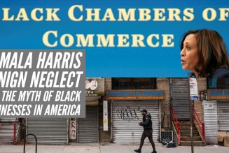 Kamala Harris Benign Neglect And The Myth Of Black Businesses In America