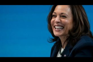 The Real Kamala Harris #Kamalaharris #Joebidensamerica #Blackpeople #Reparations
