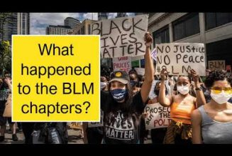"What happened to the ""Black Lives Matter"" chapters?"
