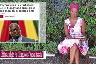 """Zimbabwean GOV. Official CALLS NAtion's Doctors """"Medical Assassins"""" After 4 MINISTERS DIE of RONA!"""
