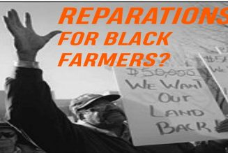 Are Black Farmers Getting Reparations? Of course Not
