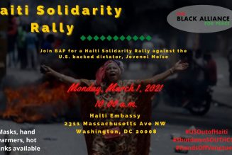 Black Alliance for Peace Haitian Solidarity Rally Interviews