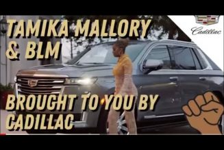 From NO VASELINE… TAMIKA MALLORY IS SLANGIN CADDYS! #TamikaMallory #BLM #NAN