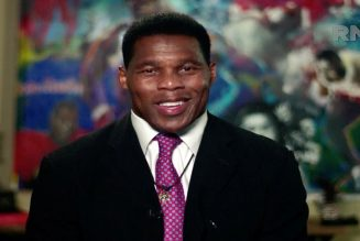 "Herschel Walker ~ ""Slavery End 130 Years Ago"" ~ Opposes Reparations for Blacks 