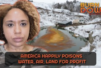 America Happily Poisons Water, Air, Land for Profit