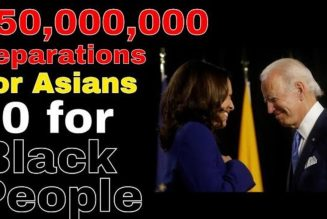 Biden administration grants 50 Million Dollars in Reparations to Asian Americans