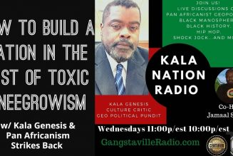 How To Build A Nation In The Mist of Toxic Kneegrowism w/ Kala Genesis & Pan Africanism