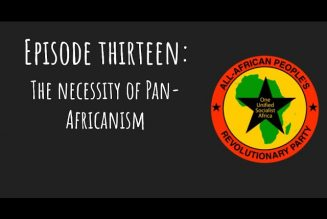 Pantsula Podcast Ep.13 The Necessity of Pan Africanism