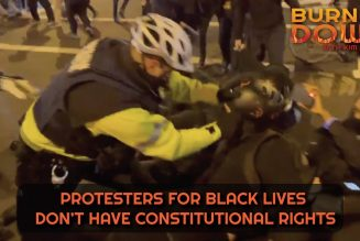 Protesters For Black Lives Don't Have Constitutional Rights