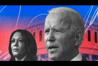 Biden's Budget A Direct Slap 👋🏾 To The Face of The Black DNC Base