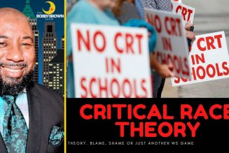 Critical Race: Theory. Blame, Shame or Just Another WS game