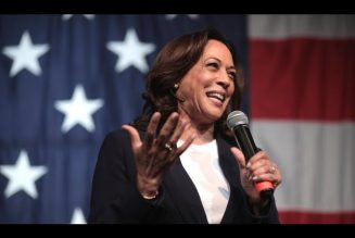 Kamala Harris Doesn't Care About The Border.  She Just Wants To Be President.