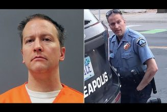 Let's talk about Derrick Chauvin's sentencing, qualified immunity, and our MENTALLY SICK society