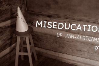 The Miseducation of Pan-Africanist pt.3