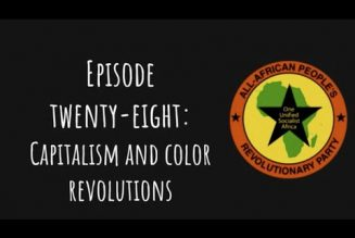 Pantsula Podcast Ep. 28: Capitalism And Color Revolutions