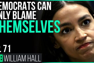 Democrats Can Only Blame Themselves   Ep. 71