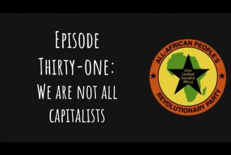 Pantsula Podcast Ep. 31: We Are Not All Capitalists (Late Edition)