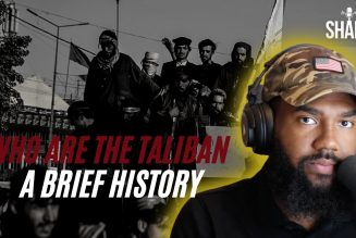 THE TALIBAN: An Afghan force that sheltered Osama bin Laden, and hates America
