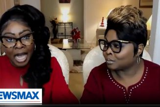 Diamond and Silk: It seems like America has been captured by an elitist cult