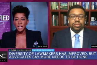 Diversity of Lawmakers Has Improved but Advocates Want More