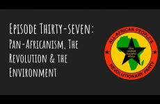 Pantsula Podcast 37: Pan-Africanism, The Revolution and the Environment