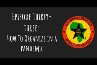 Pantsula Podcast Ep. 33: How To Organize in a Pandemic