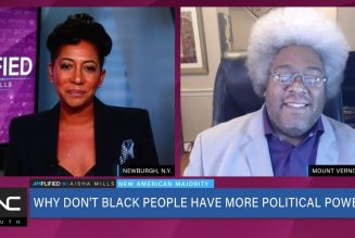 The Black Community Experiencing a Lack of Political Power