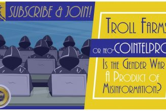 Troll Farms or Neo-COINTELPRO?: Is the Gender War A Product of Misinformation?