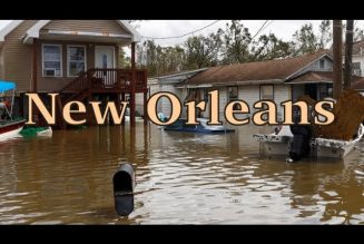 What's Going On In New Orleans
