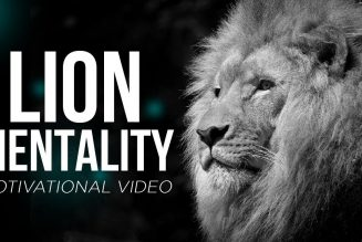The Mentality of the Lion! What It Takes To Win! | Dr. Rick Wallace