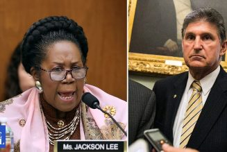 'We're Showing You What A Democratic Republic Looks Like' – Sheila Jackson Lee